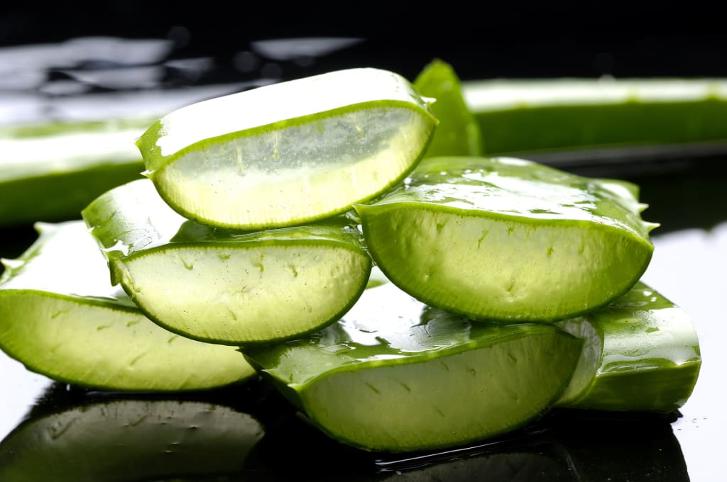 Uses & Benefits Of Aloe Vera Gel For Hairs and Skin and Weight Loss